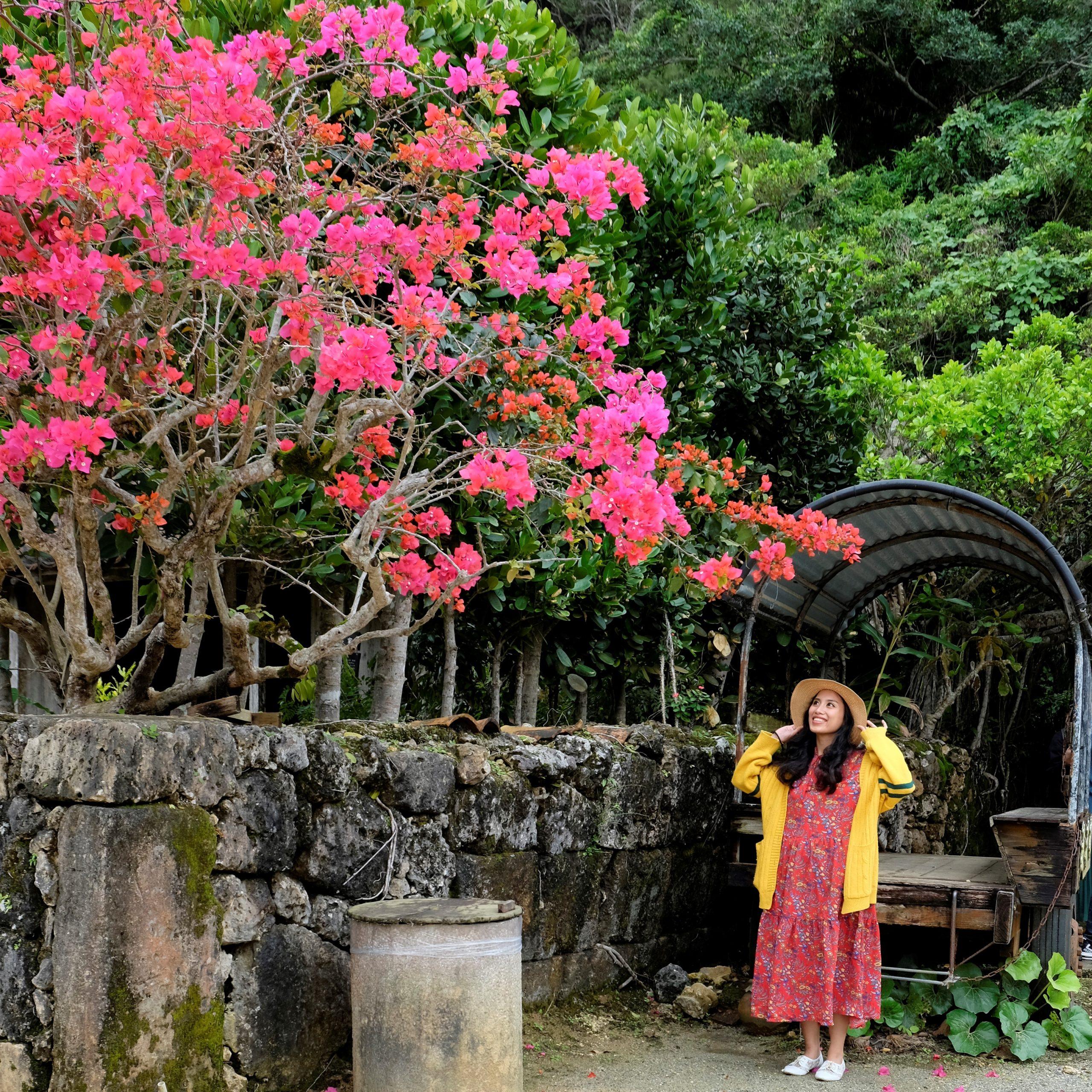 Saunering Boots Travel and Lifestyle Blog Image_Okinawa