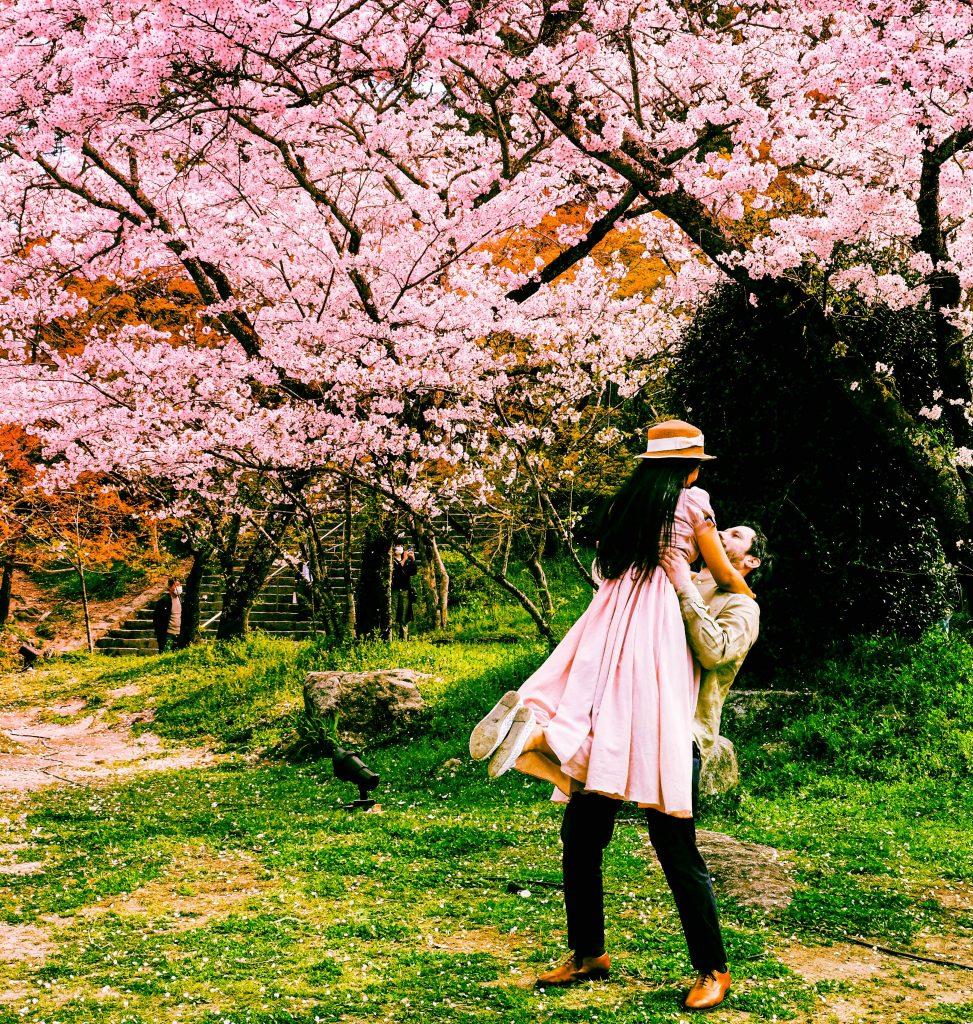 Cherry Blossom Date