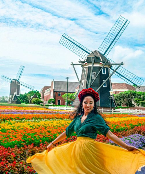 The colorful flowers of Huis Ten Bosch